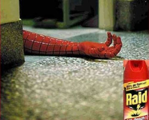 Raid-is-spiderman-killer