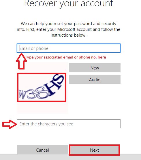 enter email and captcha