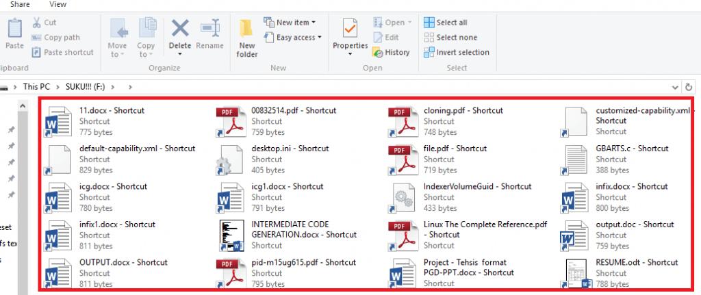 virus affected files