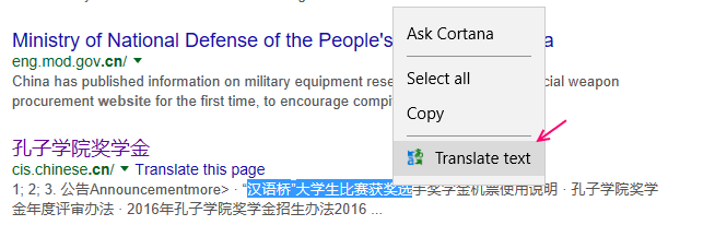 translate-default-edge-extension-4