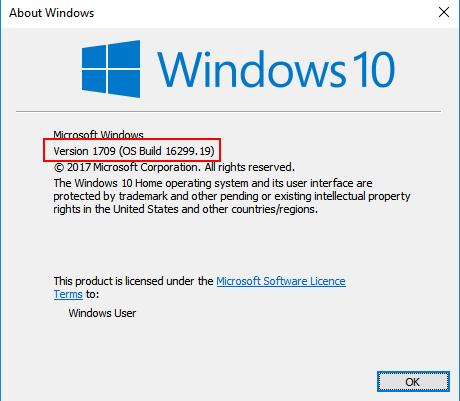 Windows Version Build Shown