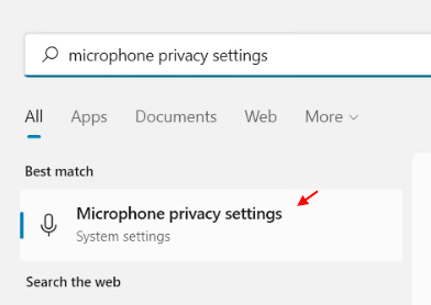 Microphone Privacy Settings Min
