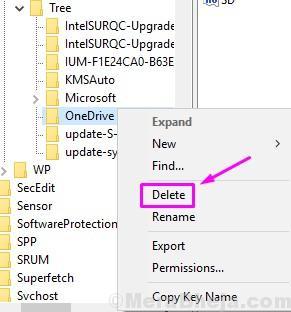 Delete Registry