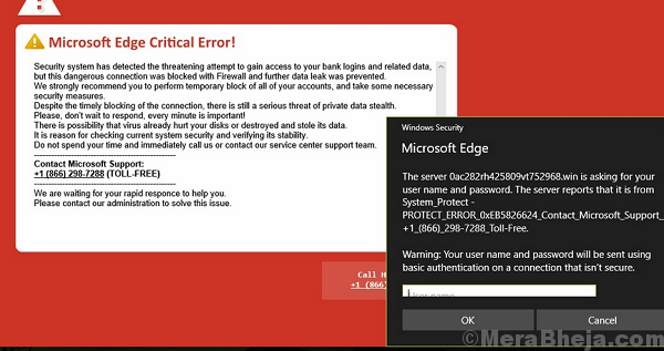 Browser Critical Error