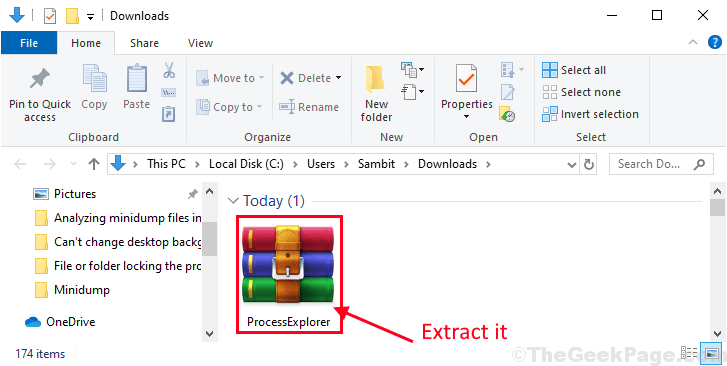Process Explorer Extract