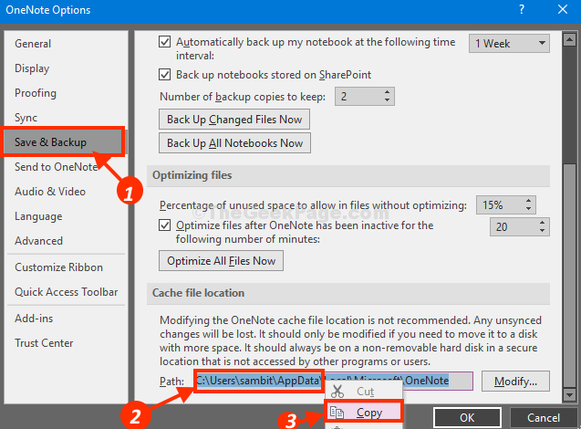 Save Backup Onenote