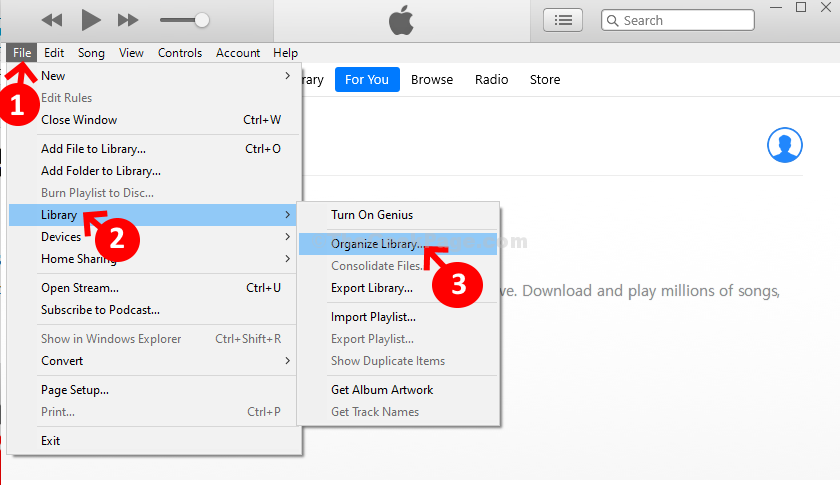 Itunes File Library