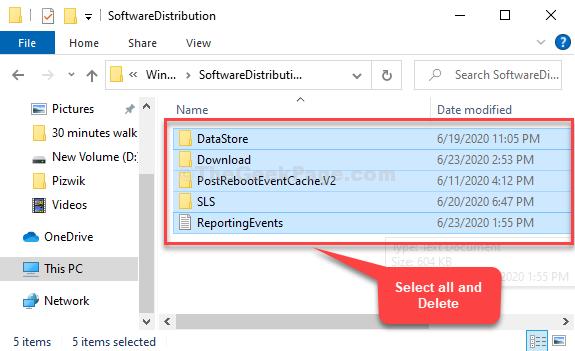 Softwaredistribution Select All Files Delete