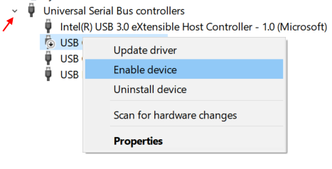 Enable Disabled Usb