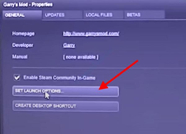 Set Launch Options