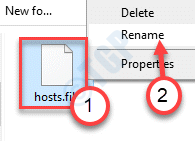 Hosts File Rename Final Main