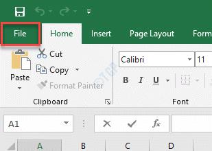 Ms Excel File Tab