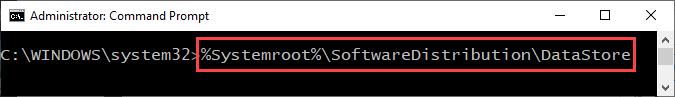 Datastore Software Distribution