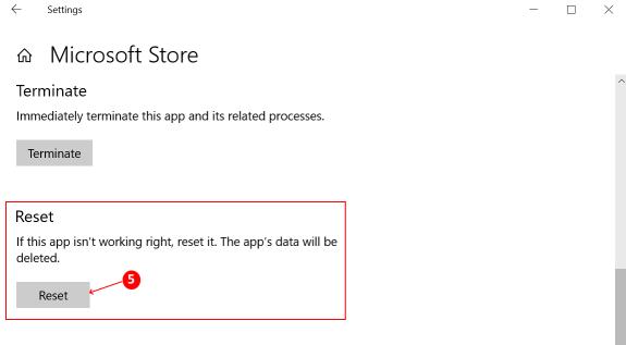 Ms Store Launch Error Reset Store