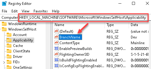 Registry Editor Navigate To Applicability Key In Local Machine Branchname
