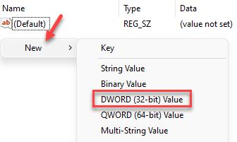Registry Editor Data Explorer Right Side Right Click New Dword (3 Bit) Value