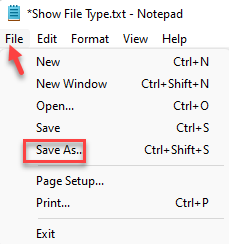 Show File Type Text Document File Tab Save As