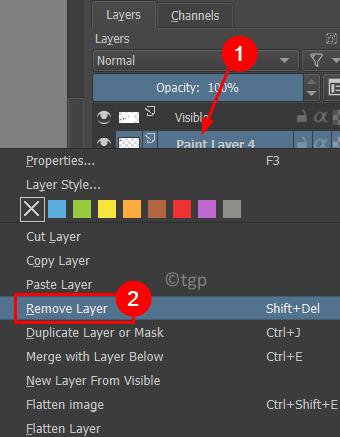 Remove Paint Layer Min