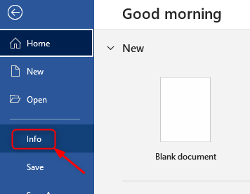 Ms Word Go To Info