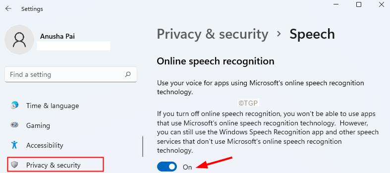 Enable Speech Recognition Min