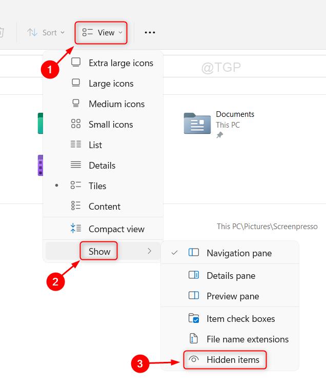 Show Hidden Items File Explorer Min