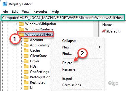 Windowsslefthost Delete Min