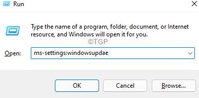 Windowsupdate In Run